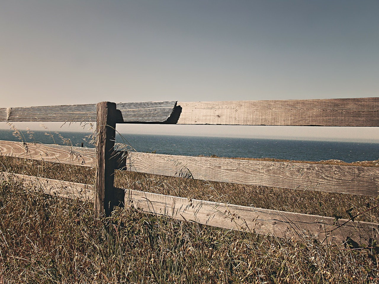 fence-238475_1280