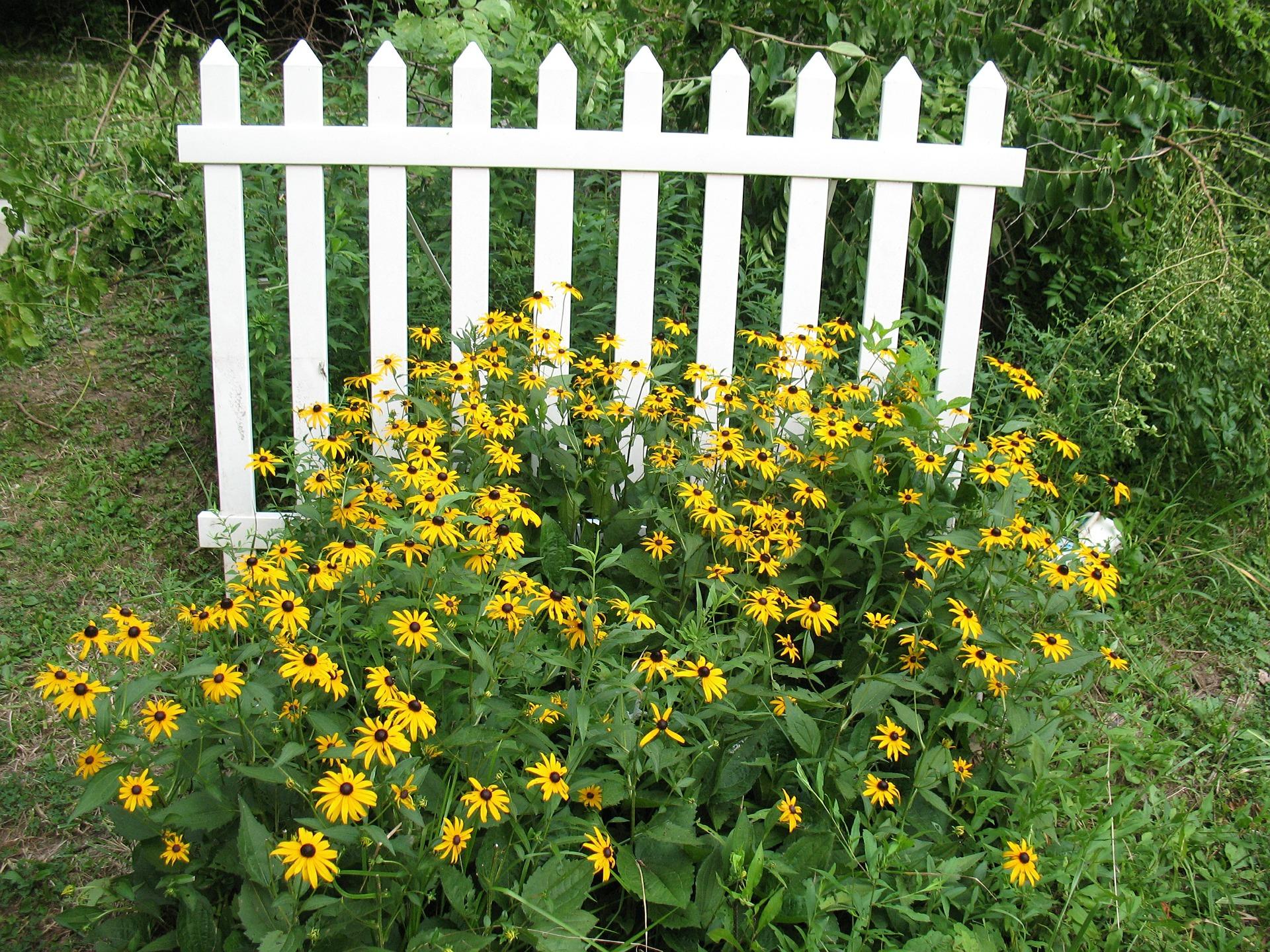fence-474001_1920
